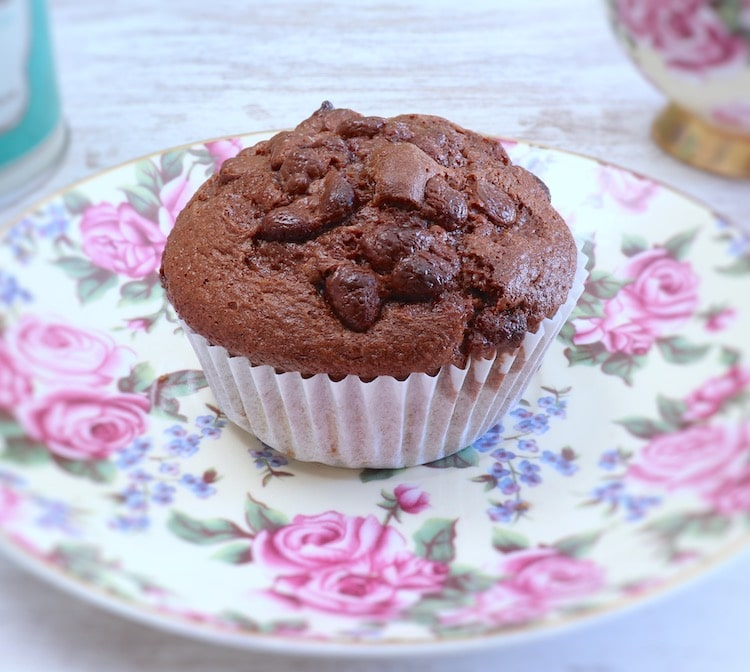 Chocolate muffin on a dish